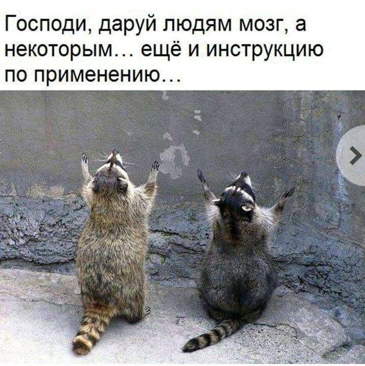 """""""Абсолютная и несусветная глупость"""", - Лукашенко о закрытии странами границ из-за коронавируса - Цензор.НЕТ 1856"""