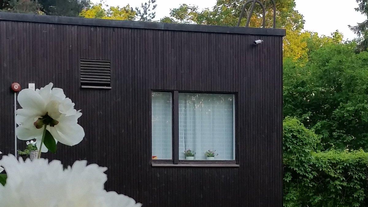 Keittiösiipi // Kitchen wing #alvaraalto #aalto #architecture #architectural #gardening #design #travelling #kitchen #visitfinland #visitalvaraalto #attraction #residence #hyväjäke #järvenpää #järvenpääasia #matkailu #kulttuuri #museokortti #piha #arkkitehtuuri #suomi #nähtävyyspic.twitter.com/PNErZu3PMy