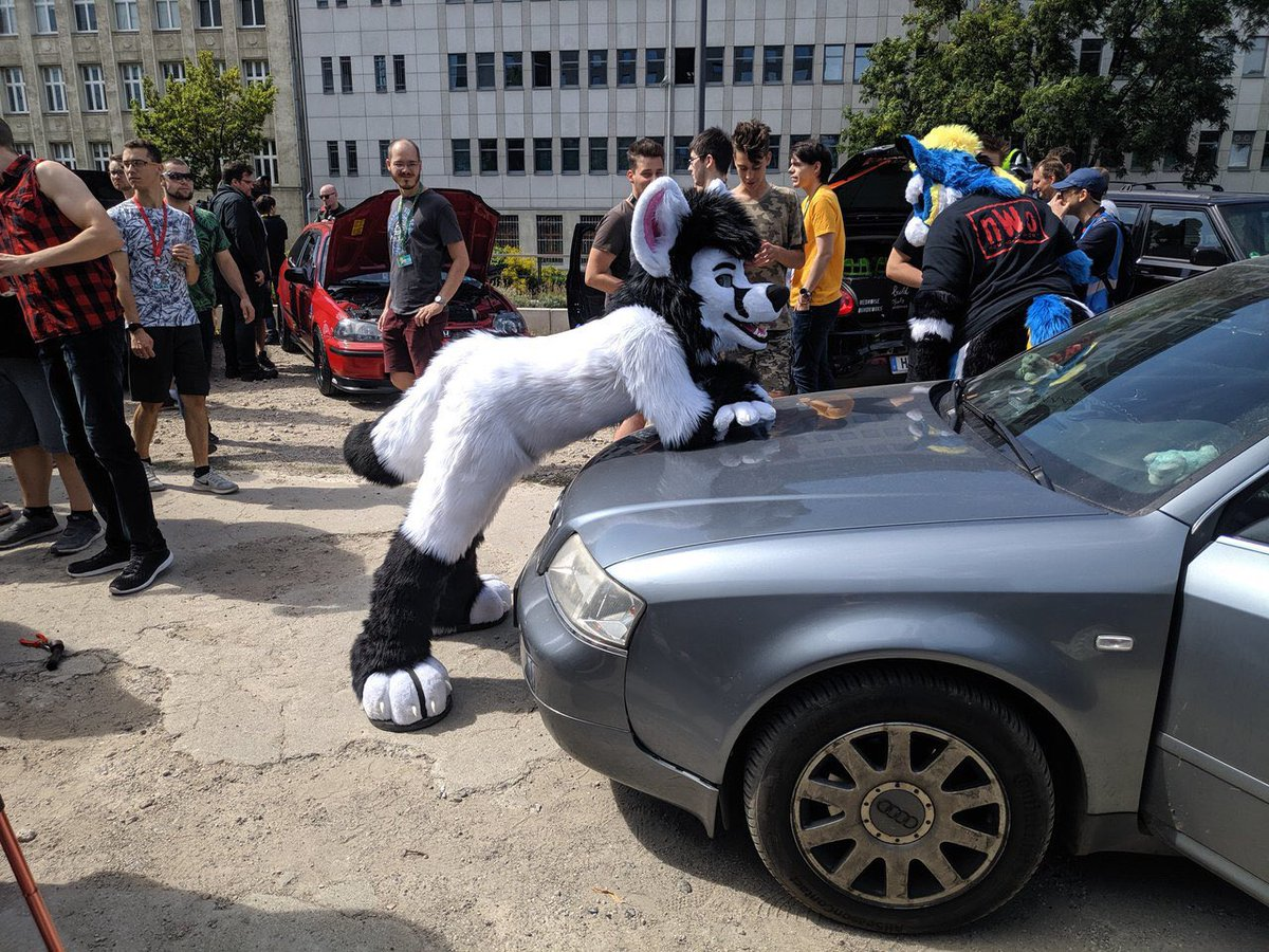 Best wishes for all where try to become a room @eurofurence. We see us :) <br>http://pic.twitter.com/LPfIXaAFir