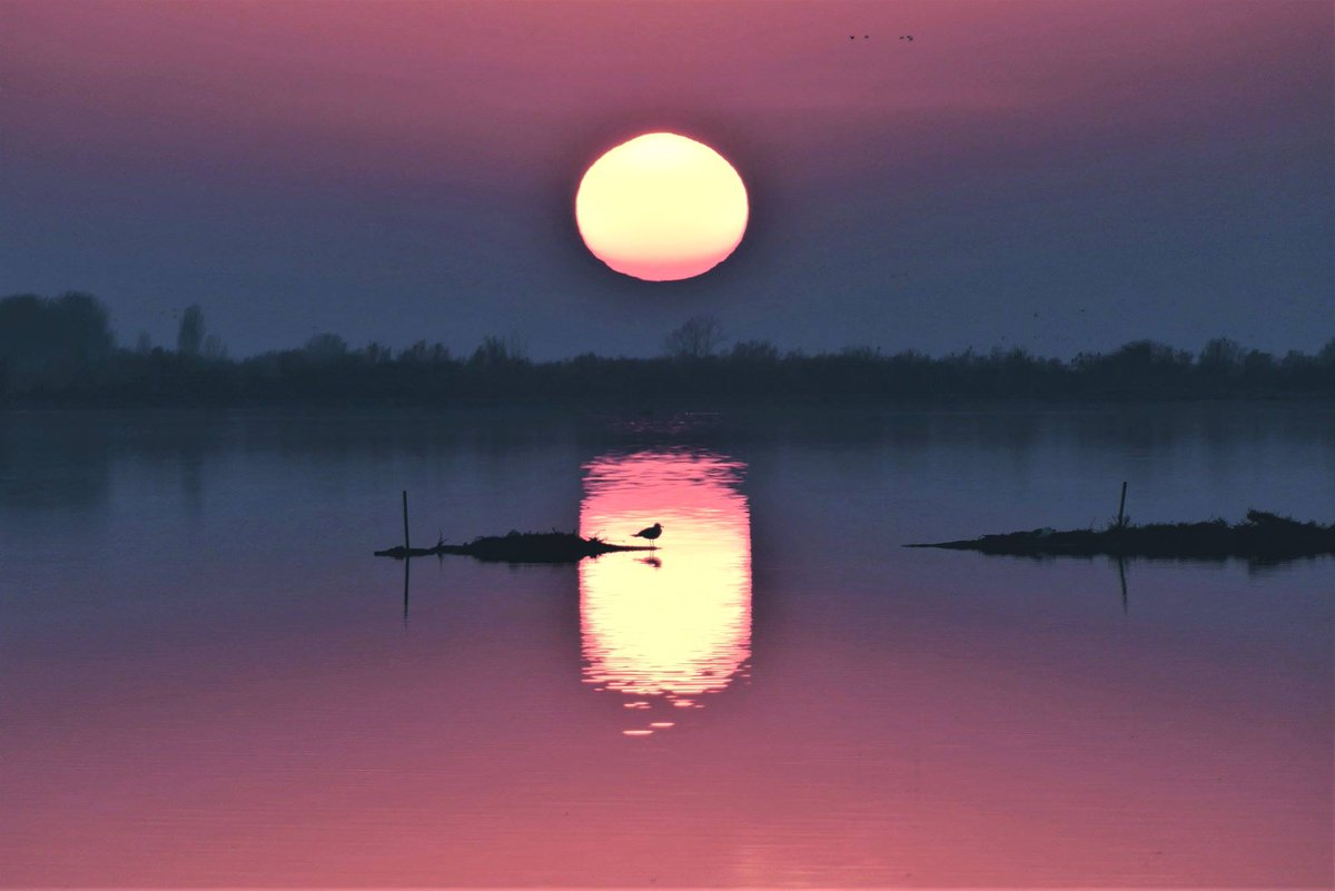 Non c'è niente di più musicale che un tramonto. ...