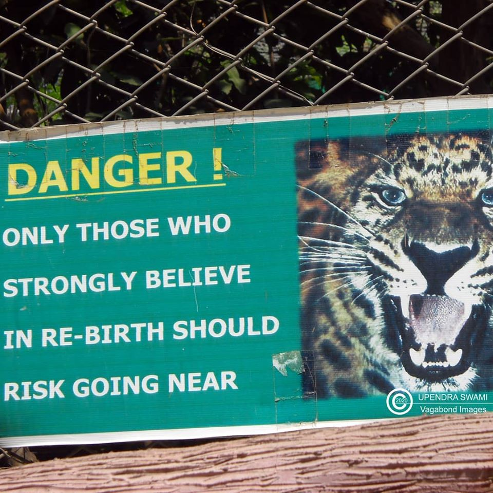 One of the most remarkable warnings I found at a zoo! #travel #traveltales #travelstories #travelphotography #travelblogger #travelblog #tourism #photography #photooftheday #picoftheday #pictureofday #zoo #Chandigarh #Chhatbir #warnings #signboard #wildlife #animals #tigerpic.twitter.com/UMogPSsojJ