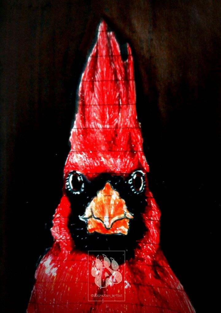 @/bestshotz_birds at instagram shared a bird I had to draw  (Art available at my insta, akiraran_artist)  #birdsoftwitter #bird #birb #northerncardinal #passerine #animal #wildlife #traditionalart #nanquin #markers #ballpen<br>http://pic.twitter.com/HuI0Q00E1L