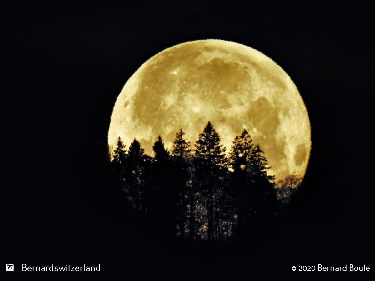 Miss Moon derrière les Rochers de Tablettes / Janvier 2020 #neuchatelville #lacdeneuchatel #igerneuchatel #igersswiss #ig_swiss #instaneuch #outdoorphotography #sky #paysdeneuchatel #jura3lacs #inlovewithswitzerland #switzerlandpictures #switzerland # #suisse#milvignes#colombierpic.twitter.com/OWcthPkWqc