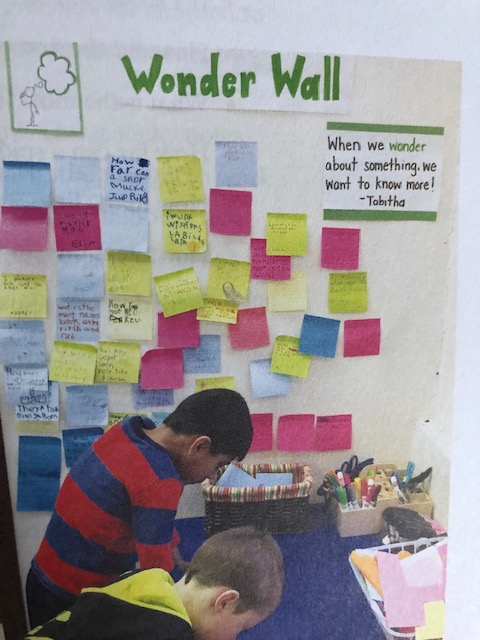 A4. Wonder walls are great to empower students to dig deeper. #crazyPLN