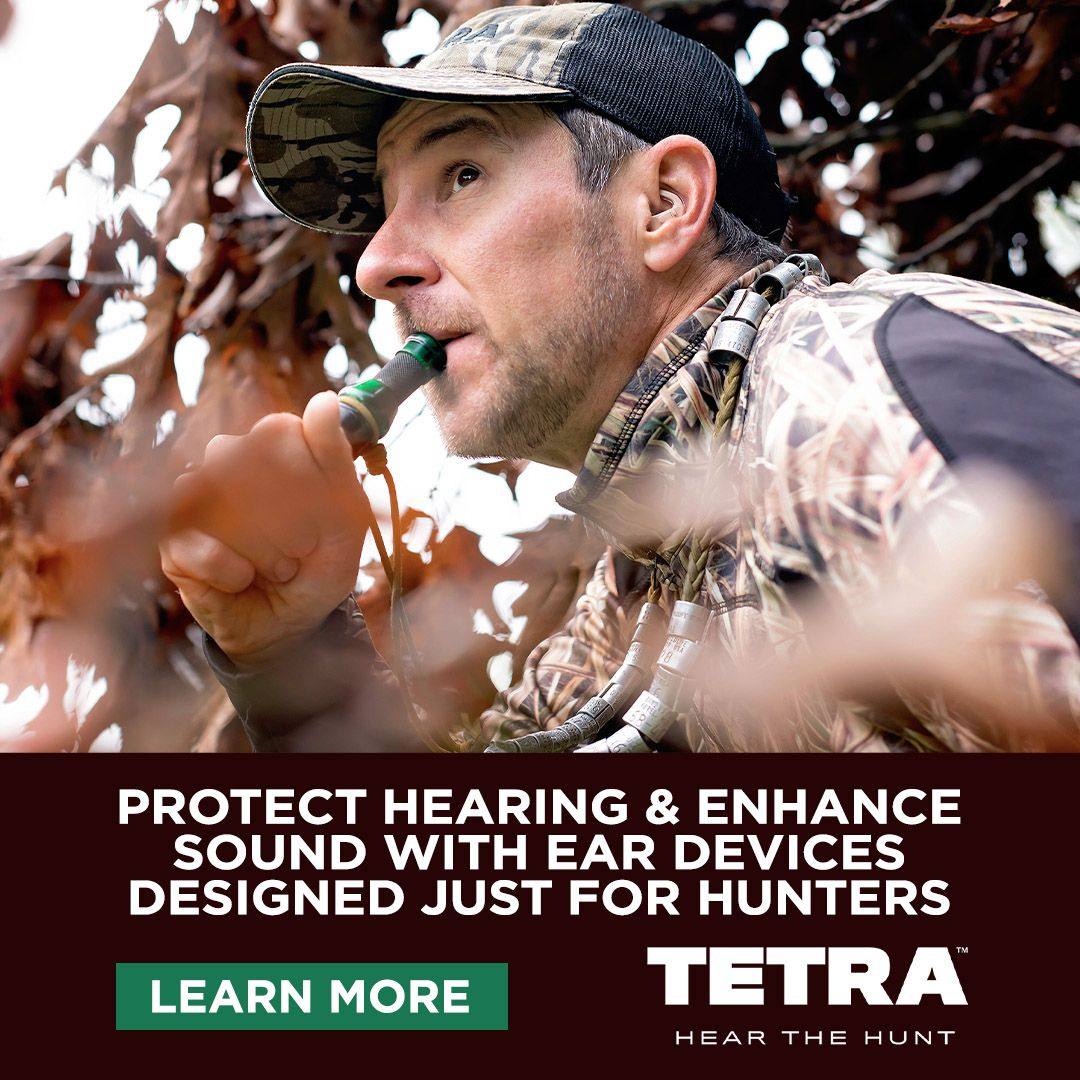 #TETRAhunt's high-tech electronic ear devices — the AlphaShield — protects against damaging noises while adding hearing enhancements and comfort for hunters. Learn more and see the video at  https:// buff.ly/37cEOOa     . #Hunting #Earprotection #electronics #hunt<br>http://pic.twitter.com/d7txs4Qoze