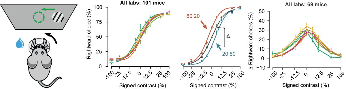 A standardized and reproducible method to measure decision-making in mice | bioRxiv