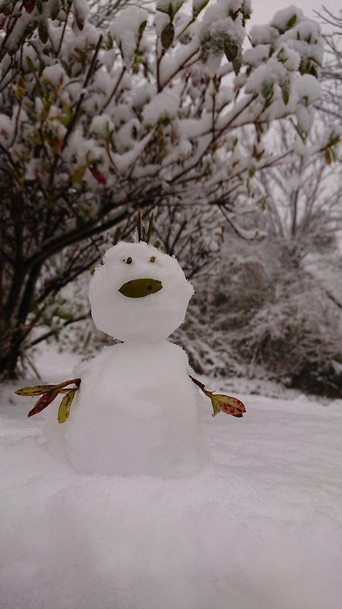 #フォートナイトパーカー #Arcteryx #NANGA #drmartens 久しぶりにお出かけしたら雪😳💕 フォートナイトパーカー着ている人に会わないなぁ😭 会ったらハイタッチエモートのポーズで待っていたい(笑)