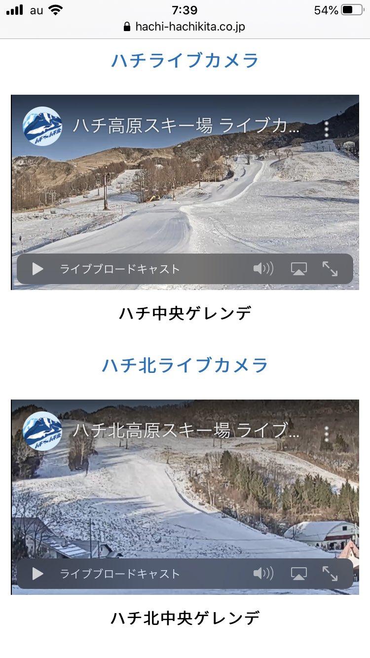 ライブ 場 高原 カメラ スキー ハチ