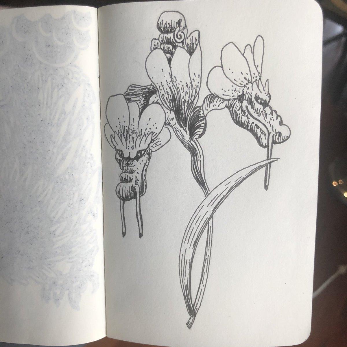 Here's a botanical style dragon sketch I drew up today.   #art #artist #melbourneart #melbourneartist #tattoodesign #ink #pen #penandink #linework #sketch #drawing #sketchbookpic.twitter.com/nGJmd14V3n