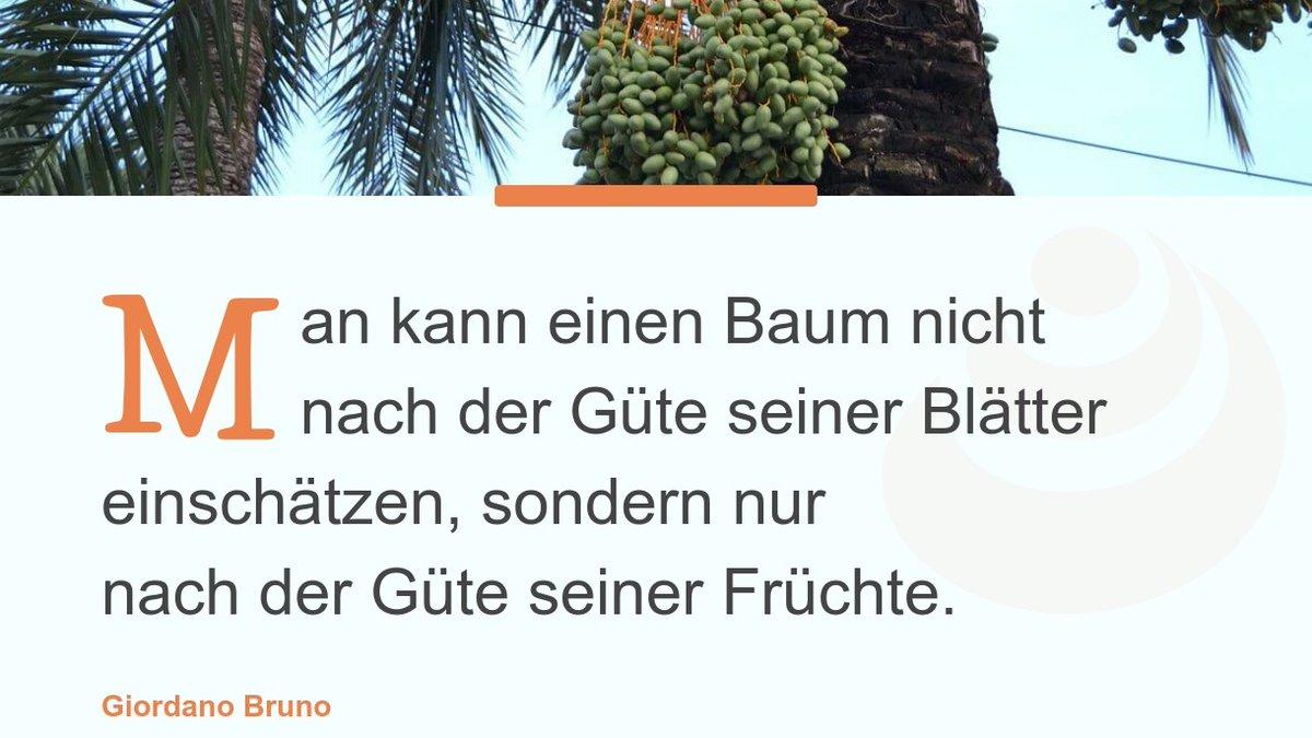 Schmökern Sie in diesem Zitat, das ich auf http://www.viabilia.de gefunden habe: https://www.viabilia.de/arbeit-spruch/guete-fruechte-1516/… #Sprüche #spruchdestages #gütepic.twitter.com/krwDvwyjrf