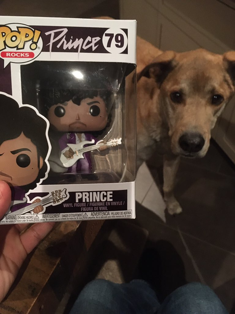 Hey @cullenthecomic check out my Funko Prince! It's beautiful! @boring_as_heck @blockedpartypod