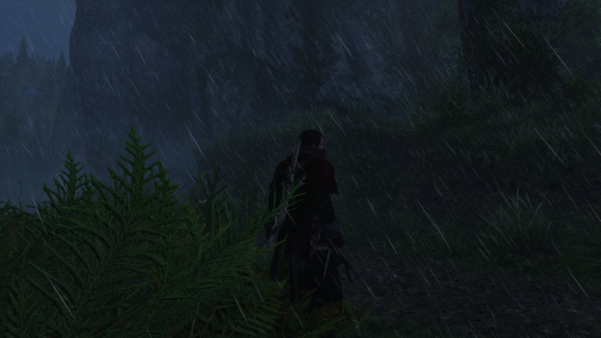 Anyone else ever have it rain so hard you can't see what you are supposed to be doing? #AssassinsCreed #RogueRemaster #LostintheWoodspic.twitter.com/QVw60bYQGB