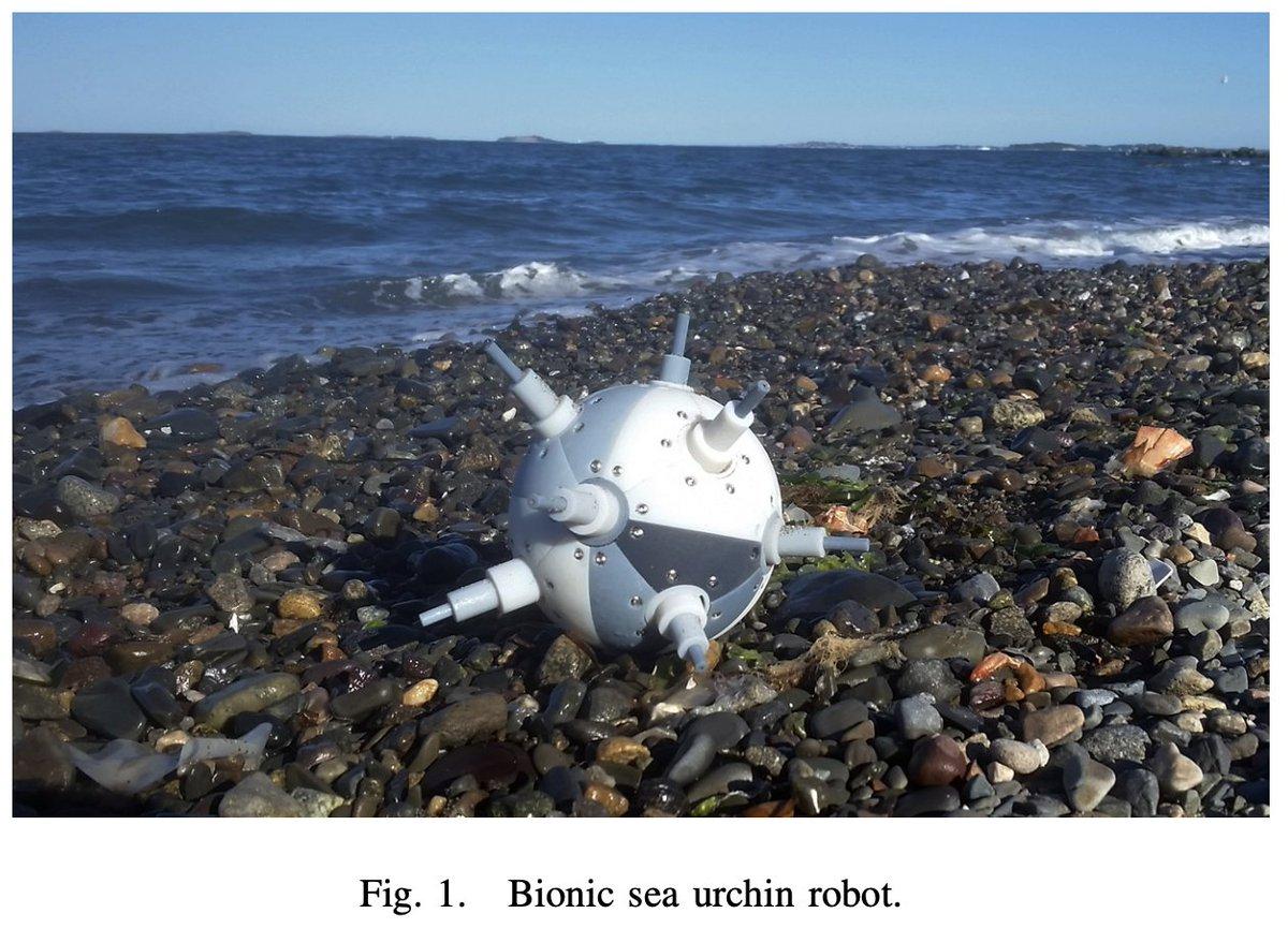 arXivでウニに着想を得たというロボットが紹介されている。棘を伸縮させることで自由な方向に動く(実際のウニの棘は伸縮しないけど)。ウニへのリスペクトなのか海辺で撮影されている。かわいい。
