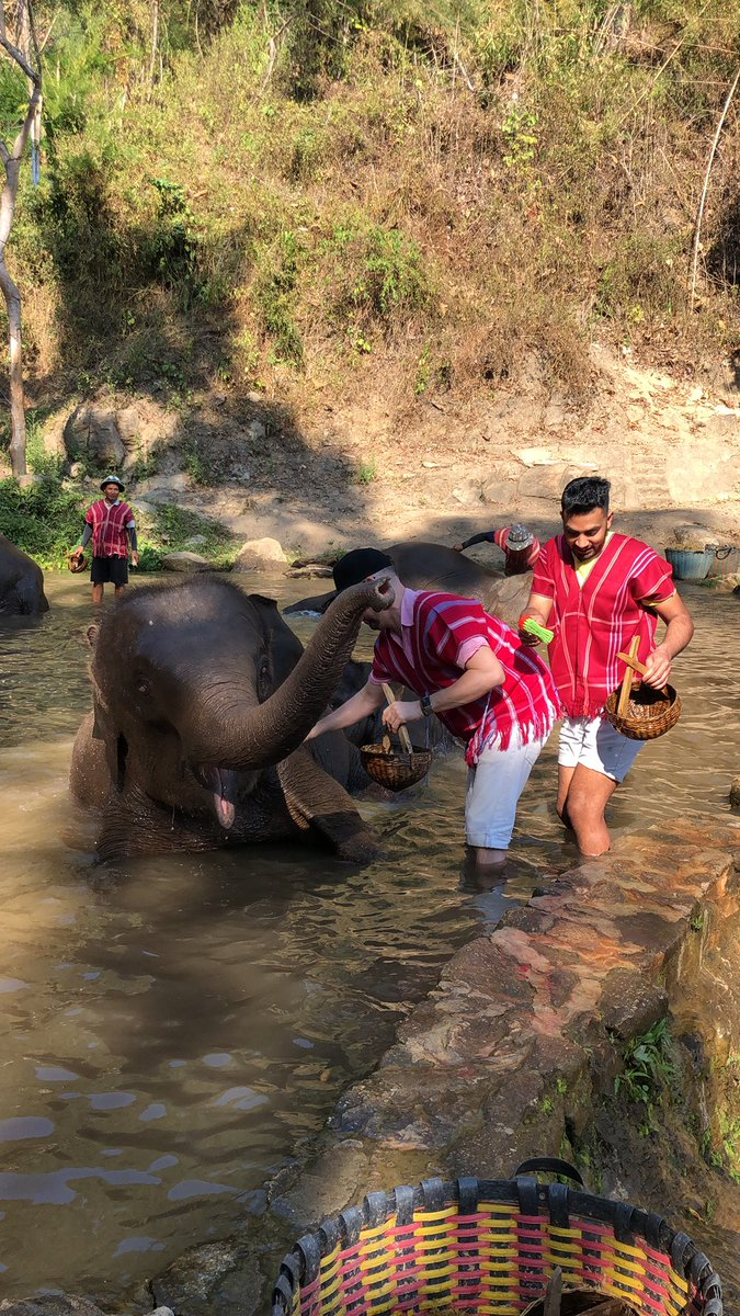 Well today was a game changer. Spent the day with the elephants of #pataraelephantfarm, learnt so much about their health & happiness & the conservation work they do. You do not ride any elephants you just give them #elephants #thailand #chiangmaipic.twitter.com/znVTUIyRRc