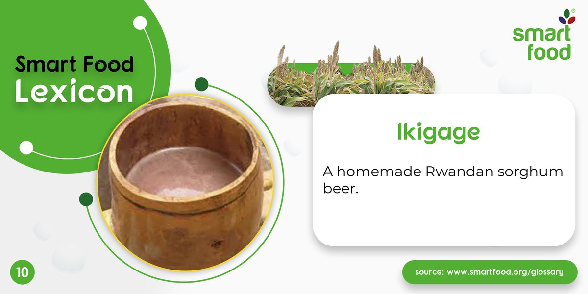 #DidYouKnow : A popular #sorghum drink of the ancient times, Ikigage, was a common drink in the areas of Kinigi and Musanze in Rwanda and was typically prepared in houses and not sold commercially. #SmartFoodLexicon #SundayThoughts #Millets #AncientGrains #Organic #Nutritionpic.twitter.com/aTQb7ddN9J