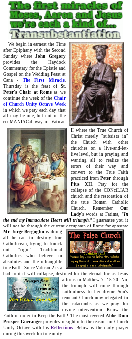 Through the gracious effort of John Gregory, we can provide you the Haydock Commentaries for the Epistle and Gospel for the 2nd Sunday After Epiphany to complement the Proper of the Holy Sacrifice of the Masshttp://dailycatholic.org/issue/Jan/unityoct.htm#day_January_19…#JMJ #Catholic #Christmas #AdmitSedeVacante