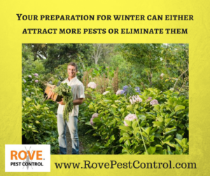 Your preparation for winter can either attract more pests or eliminate them    #winter #pests