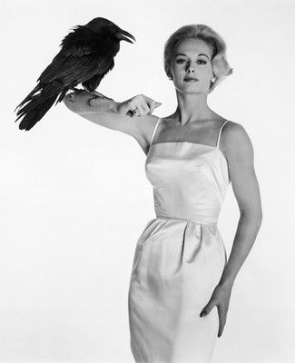 """Happy Birthday to the star of the film \""""The Birds,\"""" Tippi Hedren turns 90 years young today."""