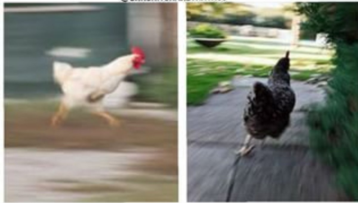 People running to twitter to check if they are the only one whose whatsapp is down #whatsappdown <br>http://pic.twitter.com/mJoQ73qLij