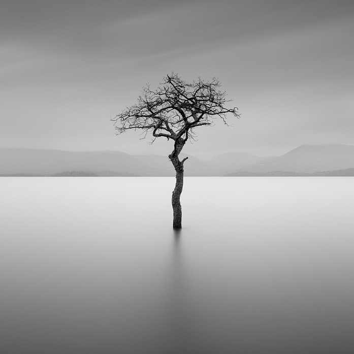Survivor by Gavin Dunbar: More artworks https://www.artlimited.net/20389  #Photography #Digital #Nature #Landscape #Waterscape #lake #river #Art #Fine #longexposure #slowshutter #longexposure_shots #photographer #photo #bnw #bw_society #square #blackandwhite #bw… https://www.artlimited.net/20389/art/photography-survivor-digital-nature-landscape-waterscape-lake-river/en/489491 …