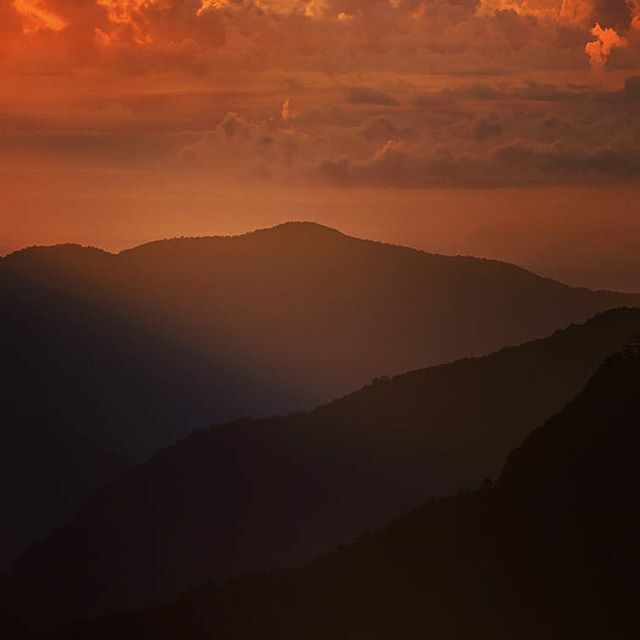 Taiwan Mountains Sunrise  #taiwantravel #sunrise #global_shotz  #theimaged #hellofrom  #shotzdelight #beautifuldestinations #vsco  #instagood #destinationearth #hsdailyfeature #milliondollarvisuals #hypebeast #welltravelled #illgrammers #moodygrams #wand… https://ift.tt/368ql4X pic.twitter.com/kGW3tWbfNv