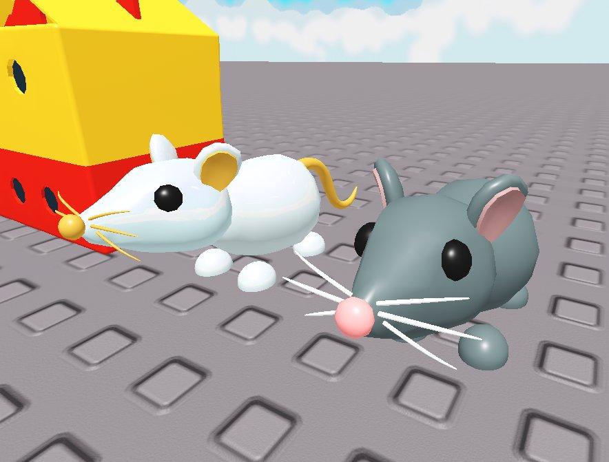 Adopt Me On Twitter Rats Rats Rats Rats Rats Rats