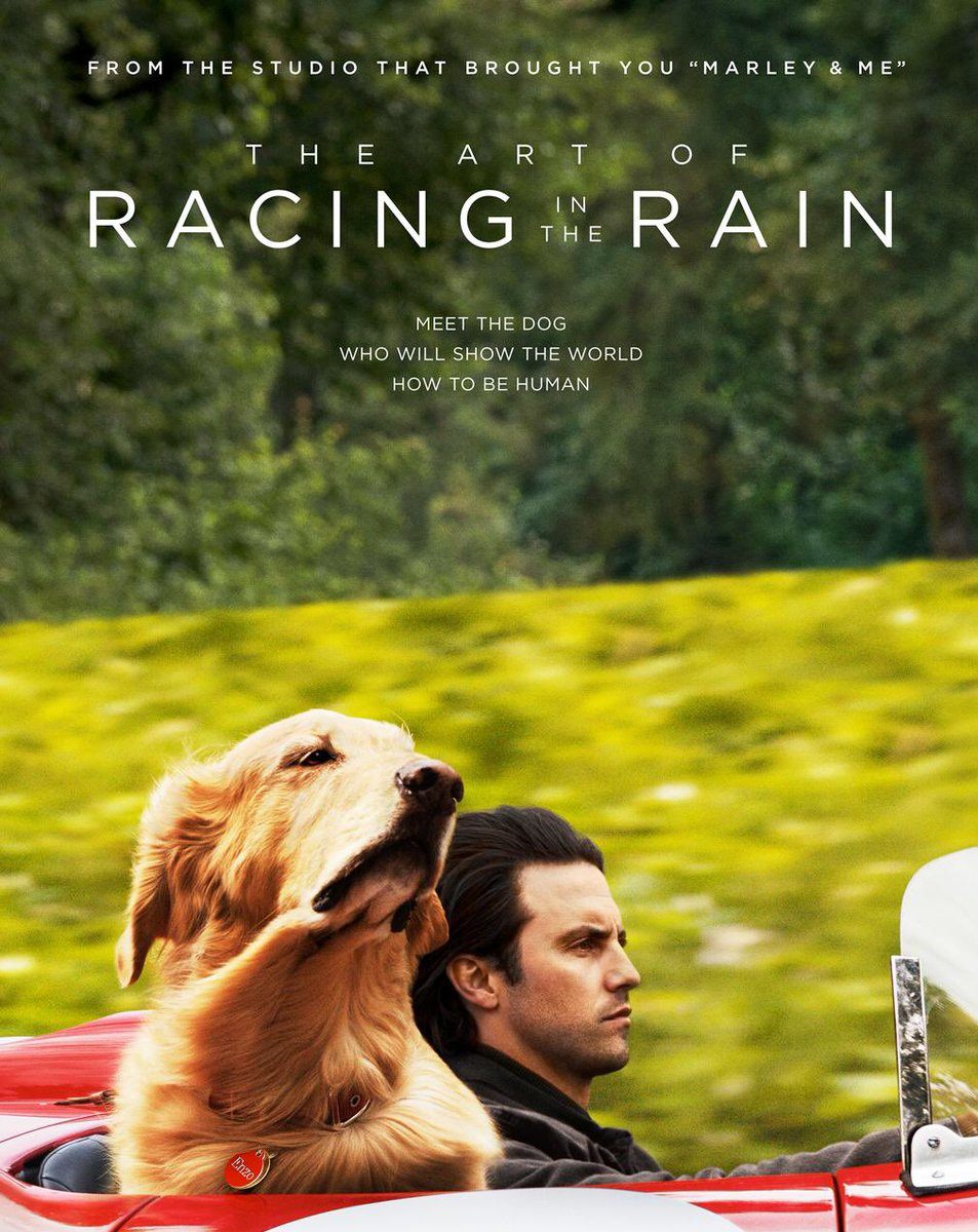 Pro tip: Only watch The Art of Racing in the Rain on your flight home (to your dogs). I was a puddle on the plane.  @MiloVentimiglia pic.twitter.com/Yw6Du3rNSt
