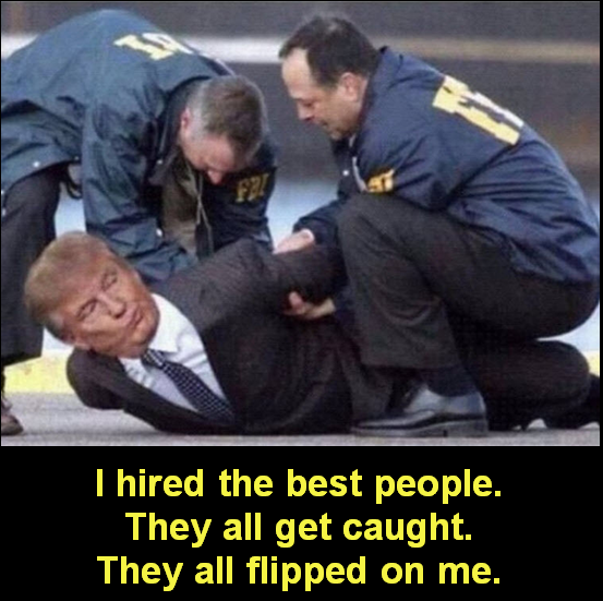 #MoronInChief hires the best people. They all get caught. Then they flip on him.  #BarrKnew #PenceKnew #PompeoKnew #NunesKnew #PerryKnew #MulvaneyKnew #MoscowMitch knew. #TheyAllKnew   #LevParnas has receipts Now FBI has them too  #IMPOTUS #ImpeachedPresident #ImpeachedForever