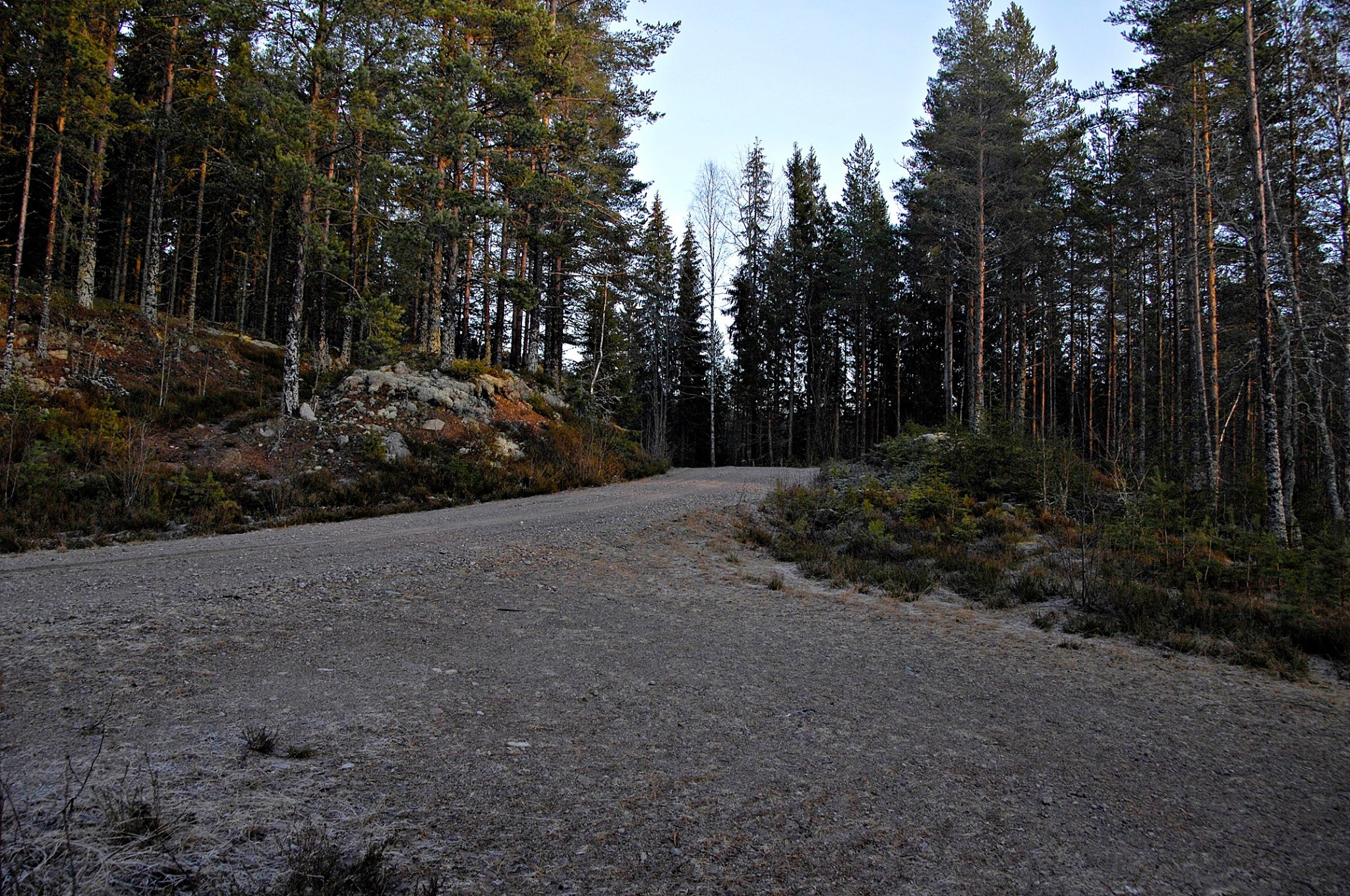 World Rally Championship: Temporada 2020 - Página 7 EOq_Y26WoAAHVrP?format=jpg&name=4096x4096