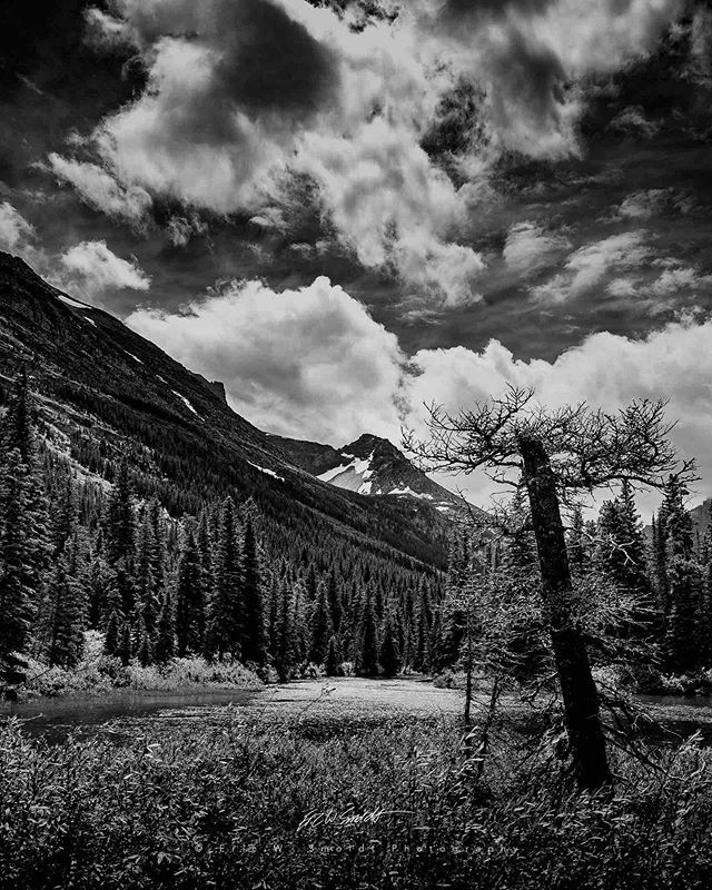Swiftcurrent Cutoff IV Monochrome . . . . . #montana, #bigskycountry, #clouds,#backcountry, #sky, #canon, #ericsmoldt, #ericsmoldtphotography, #blackandwhite, #bw, #monochrome, #bnw, #blackandwhite, #amtrak, #the406, #bnw_captures, #bnw_detaillovers, #bn… https://ift.tt/2RA2VjApic.twitter.com/Vkpcbx1Z4c
