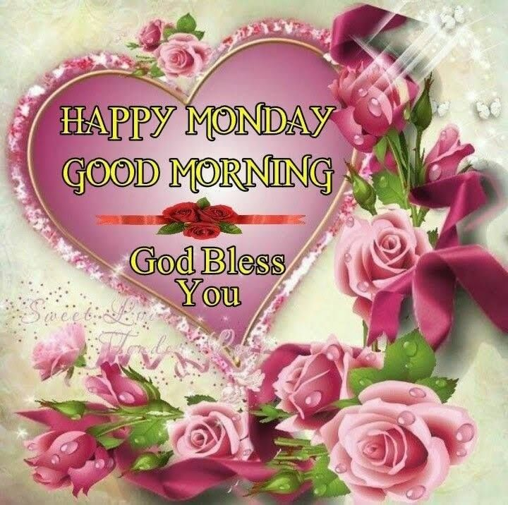 GOOD MORNING FRIENDS #NewDAY   ,,,  ITS #MONDAY #WOW!!!!!!!!  NEW WEEK   , #HAPPY ANOTHER  FRESH DAY TO ALL LOVELIES AND BEAUTIFUL SOULS 🌹🌹🌹