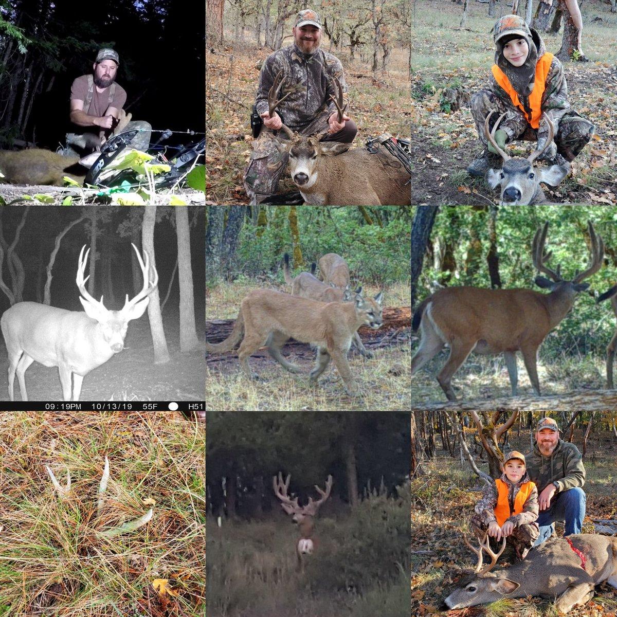 Compilation of 2019!! #hunting #blacktailbuck #Muledeer <br>http://pic.twitter.com/OzVPdOYdWs