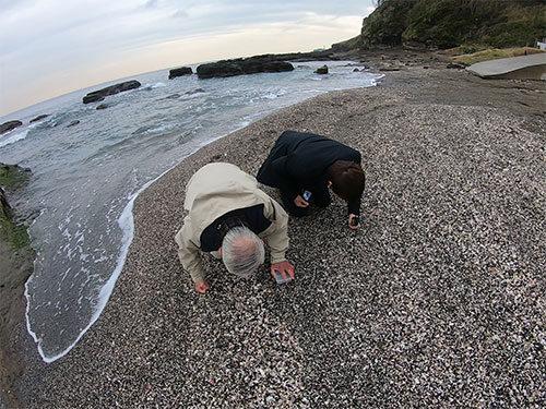 三浦半島で30年以上貝殻を集めている方と一緒に貝殻拾いに行ってきました。貝、奥が深すぎるぞ!(安藤)。 / 貝殻集めて30年!貝殻集めの達人に趣味を続けるコツを聞きました  #DPZ