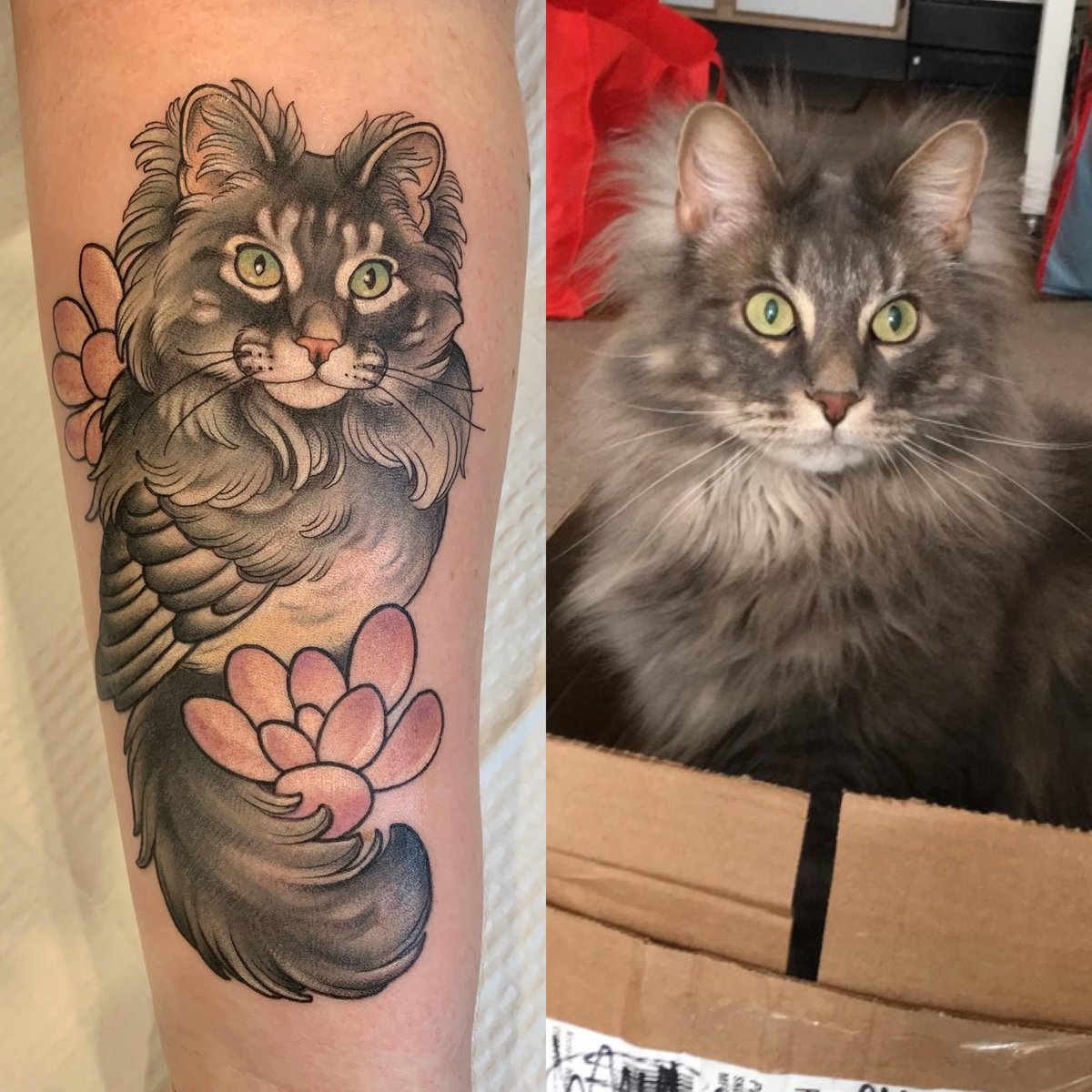 Got a #Fun #Catbird #Tattoo of my #Boy!   #Cats #Cat #Kittens #Kitten #Kitty #Pets #Pet #Meow #Moe #CuteCats #CuteCat #CuteKittens #CuteKitten #MeowMoe     .