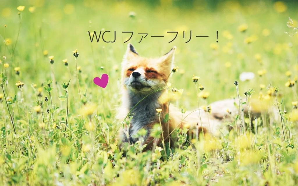RT @animalrights_JP: Good news!若槻千夏さんのブランドWCJがファーフリー! https://t.co/WSJAr54bq4 https://t.co/zzSlnH6Bfx