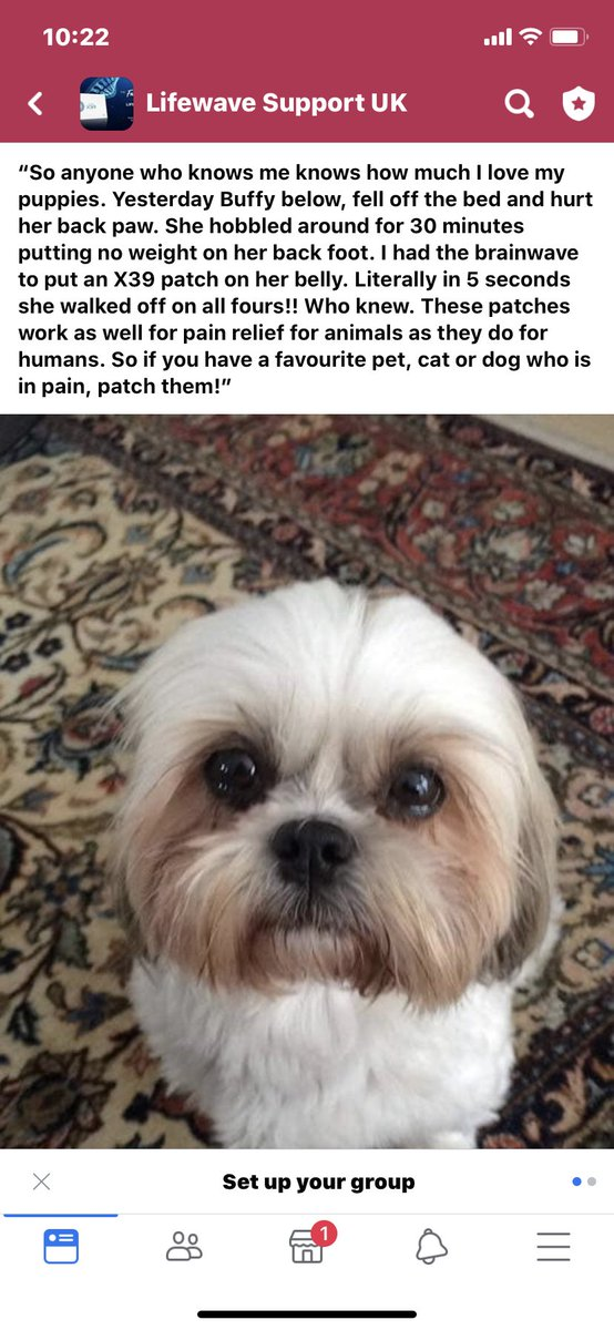 Our patches don't just work on humans. They keep our 4-legged family members well too.#dog #DogLover #dogs #lovemydog #canine #family #Families #X39 #health #lifewave #healthy #healthandwellness #healthiswealth #pain #painful #painrelief #lifewave #love #happy #Happinesspic.twitter.com/O6QcUpbb3g