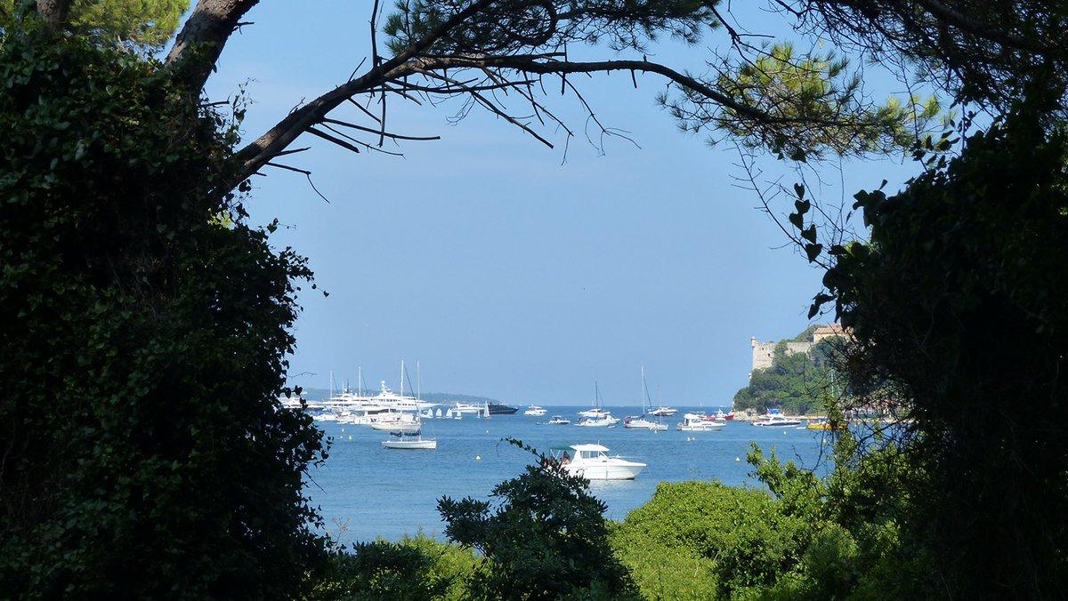 L'Île Sainte-Marguerite de Cannes #Cannes #CannesLerins #cannestourism #CotedAzurFrance #ilesaintmarguerite #ÎlesdeLérins #landscape #Cannesisyours #cotedazur #JaimeLérins #NaturePhotography @davidlisnard @villecannes @VisitCotedazur @CannesIsYours #Dept06 #PACA #sea #blueskypic.twitter.com/v6BVmObrGl