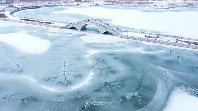 Cina, le crepe nel lago ghiacciato sembrano rami: ...