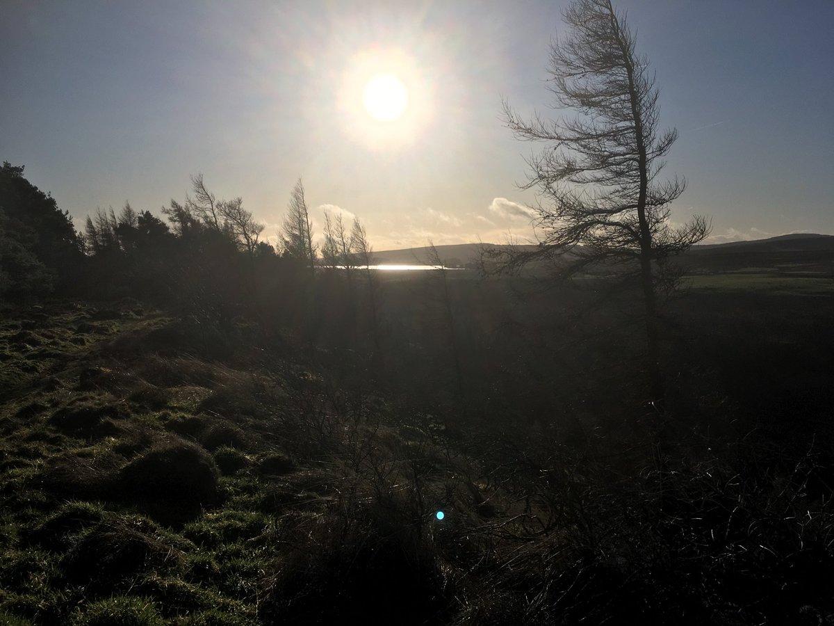 Loch Coulter and Buckieburn reservoir Central Belt Way #hikerseuphoria.com#