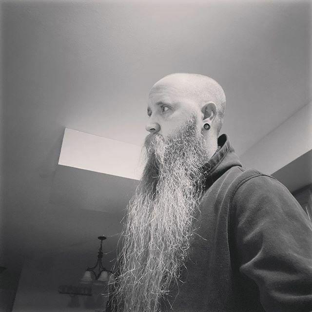 All About that sidebeard #beardedvillains #bvhopeful #beardsofinstagram #beard #iowa #515 https://ift.tt/38sf1lFpic.twitter.com/iBqXdVSSbS