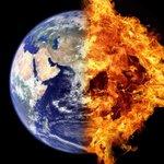 Image for the Tweet beginning: La sexta extinción masiva está