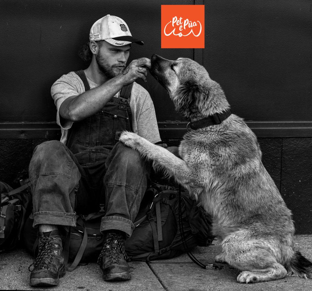 """Los perros son mis personas favoritas"". – Richard Dean Anderson #quoteoftheday #frasesdeperros #mascotasactivas #petepua #petelovers #pets #firl #personafavorita #perros #humanoideal pic.twitter.com/L6Y6W7kc8G"