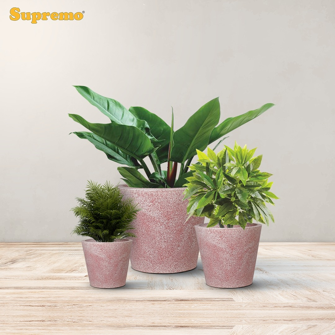Planters in varied sizes and designs to meet your indoor and outdoor requirements. Drop your contact number to connect with us for details.   Or call - 9098989090  #planters #indoorplanter #outdoorplanter #supremo #interiordecoration #interior #interiordesigning #interiordesignpic.twitter.com/ZsoONlX77q