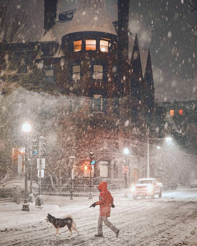 In a Boston snowstorm, the night belongs to the dogs and their walkers From Saturday night's snow furies . . . . . . . . . . #boston #igboston #theprettycities #mynewengland #livecolorfully #postitfortheaesthetic #seekthesimplicity #verilymoment… https://ift.tt/2R8xoX4pic.twitter.com/10DHbMoIpQ