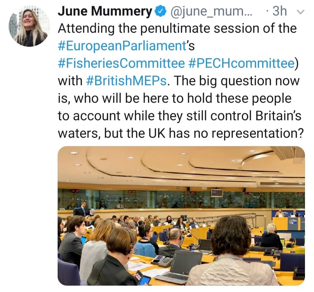 I will never get over this tweet.  Ever.  It's the final day of UK in EU Parliament   And   A Brexit MEP  ONLY NOW IS  worried about how Britain's interests will be represented once it's no longer in the EU.   Rarely do you see such absolute absurdity portrayed in 280 characters.