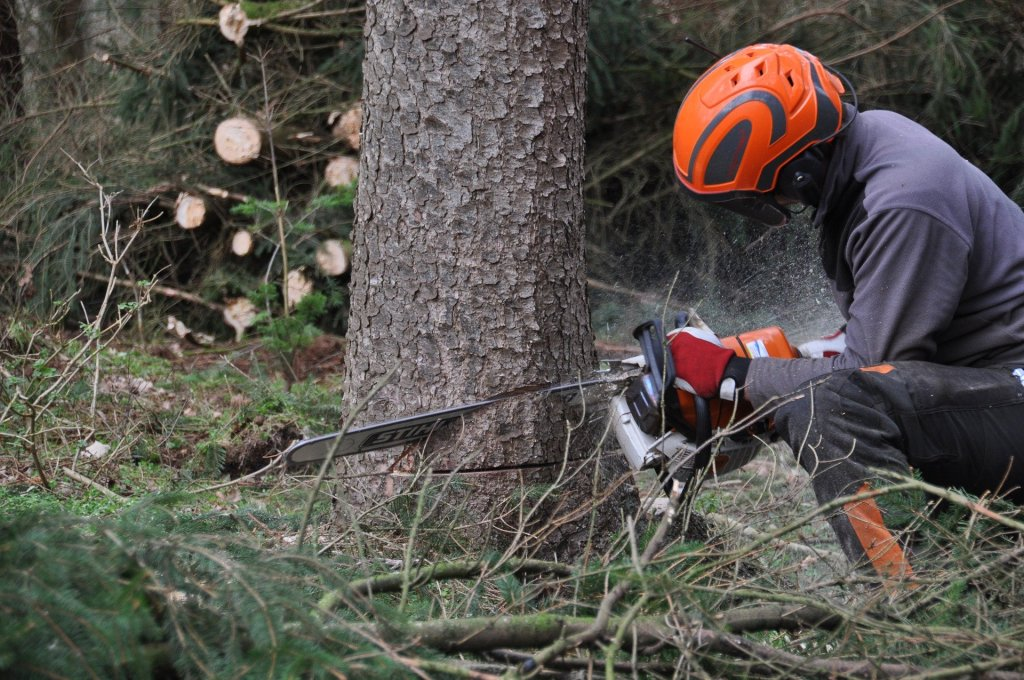 Are your contractors competent? WorkSafe is reminding companies to ensure the contractors they employ are competent for the job at hand after an inexperienced forestry worker was hit by a falling tree - - - Read the article: http://www.safetynews.co.nz/are-your-contractors-competent/ …pic.twitter.com/zZygC3dBYe