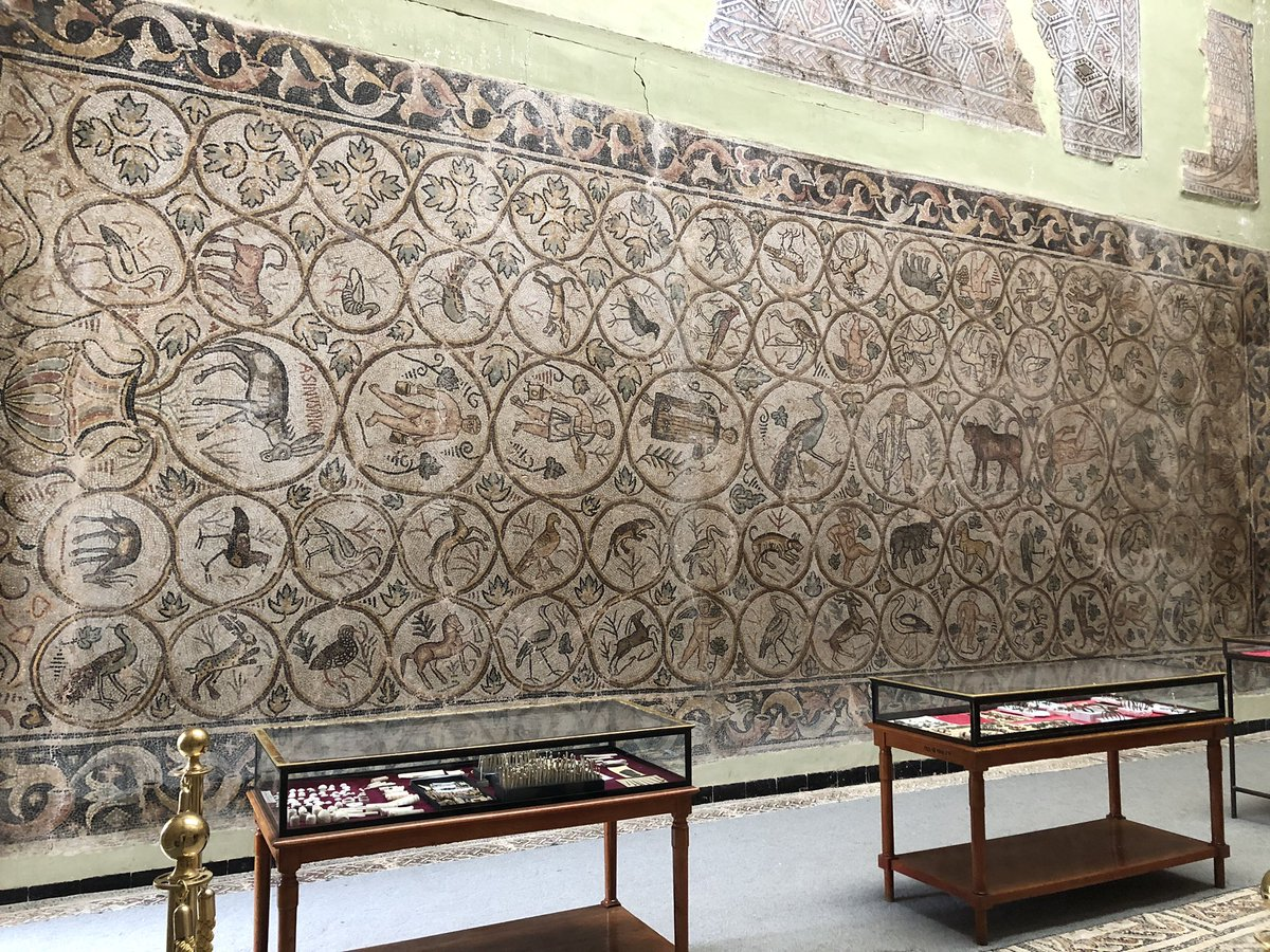 "Large mosaic that apparently was used as a kind of hopscotch court by the young girls who lived the Roman villa where it was found. One panel says ""Winner Donkey"". The grassy patch of ground is its original location. At Djémila, Algeria  <br>http://pic.twitter.com/srUKPYlrrC"