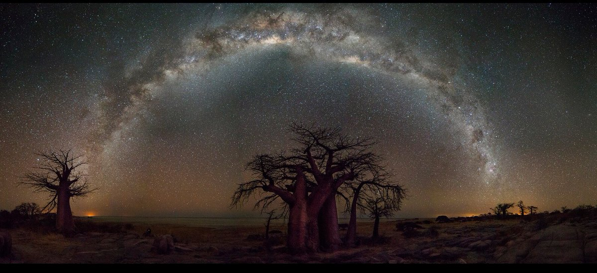 A bushveld view of the Milky Way. When the only light pollution comes from the heavens.
