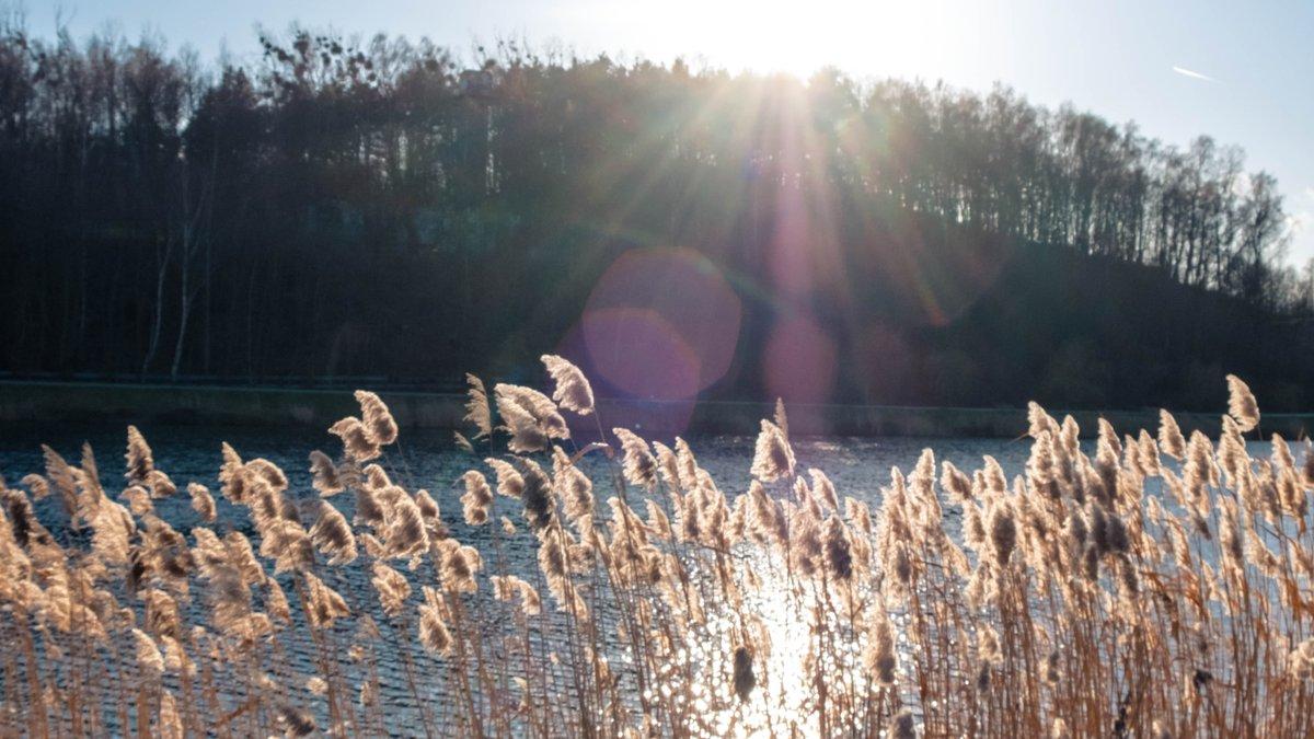 """Wraz ze zmianami klimatycznymi, krajobraz zimy ulega przeobrażeniom Jak wygląda """"wiosna w styczniu"""" w @gdansk  Pokaż nam ją w swoim kadrze i wygraj kalendarz ścienny oraz kubek.  Szczegóły konkursuhttp://bit.ly/2NLMZtwpic.twitter.com/r6J3ZguZcp"""