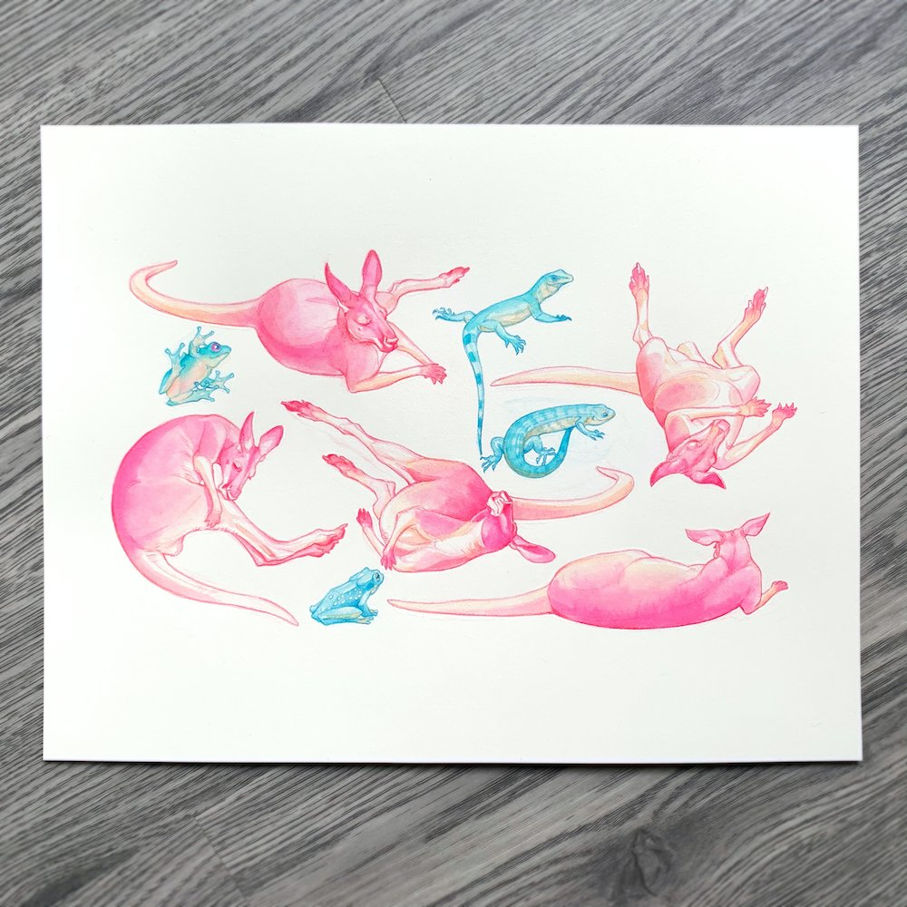 Australian animals watercolour  The original painting is in my shop - all the proceeds will be donated to WIRES wildlife rescue! <br>http://pic.twitter.com/Q23dvMl2nY